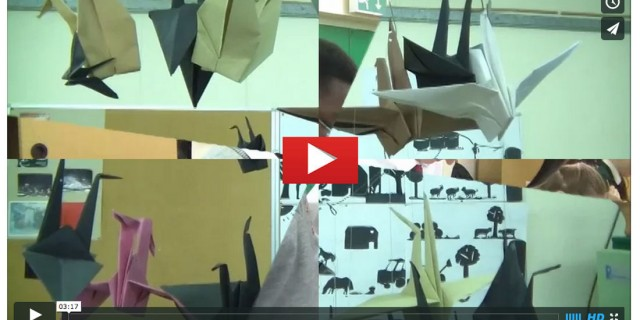 The Royal School Cavan 2015: video of CE