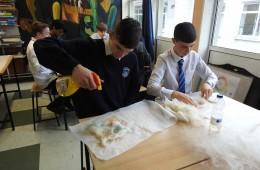 Drimnagh Castle Secondary School, Dublin 2018